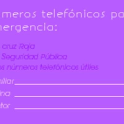 Folleto9x5 frente